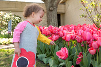 Cheekwood in Bloom Sunday Activities